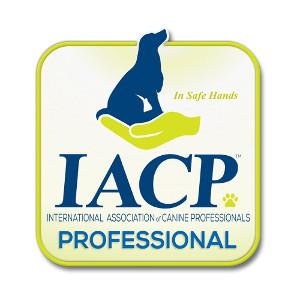 iacp-professional-logo-300x299